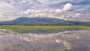 Lago_de_cuitzeo