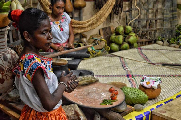 pueblos indígenas y afromexicanos