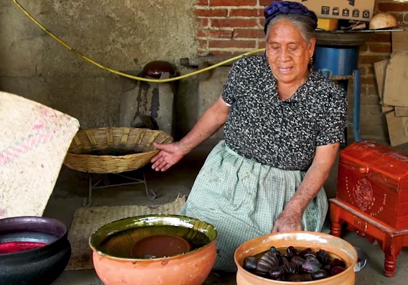 Viviana Alávez artesana mexicana